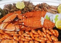 plateau de crustacés